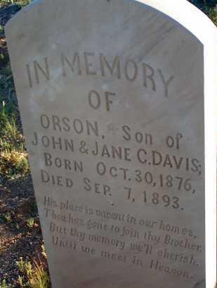DAVIS, ORSON - Apache County, Arizona | ORSON DAVIS - Arizona Gravestone Photos