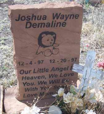 DEMALINE, JOSHUA WAYNE - Apache County, Arizona   JOSHUA WAYNE DEMALINE - Arizona Gravestone Photos