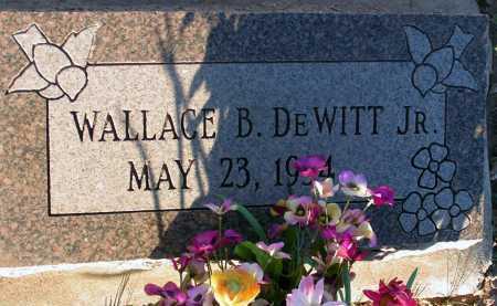 DEWITT, WALLACE B., JR. - Apache County, Arizona | WALLACE B., JR. DEWITT - Arizona Gravestone Photos