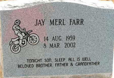 FARR, JAY MERL - Apache County, Arizona   JAY MERL FARR - Arizona Gravestone Photos