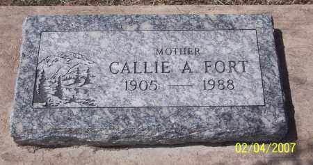 FORT, CALLIE A. - Apache County, Arizona | CALLIE A. FORT - Arizona Gravestone Photos