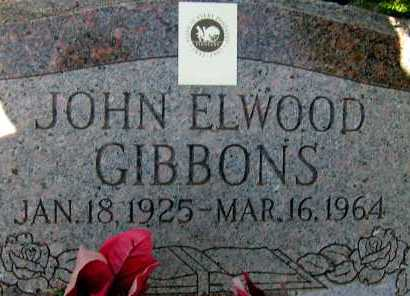 GIBBONS, JOHN ELWOOD - Apache County, Arizona | JOHN ELWOOD GIBBONS - Arizona Gravestone Photos