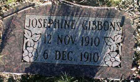 GIBBONS, JOSEPHINE - Apache County, Arizona | JOSEPHINE GIBBONS - Arizona Gravestone Photos