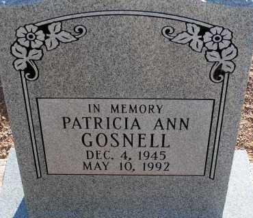 GOSNELL, PATRICIA ANN - Apache County, Arizona   PATRICIA ANN GOSNELL - Arizona Gravestone Photos