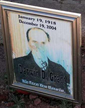 GRANT, DARWIN D. - Apache County, Arizona | DARWIN D. GRANT - Arizona Gravestone Photos