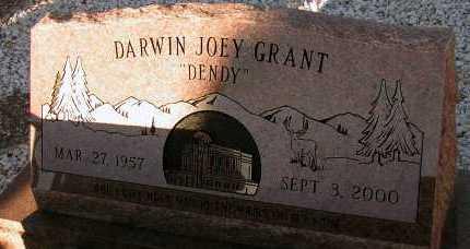 GRANT, DARWIN JOEY - Apache County, Arizona   DARWIN JOEY GRANT - Arizona Gravestone Photos