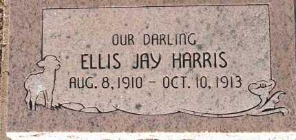HARRIS, ELLIS JAY - Apache County, Arizona | ELLIS JAY HARRIS - Arizona Gravestone Photos