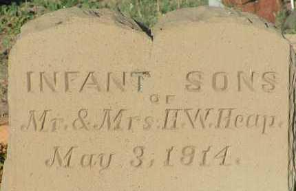 HEAP, INFANT SONS - Apache County, Arizona | INFANT SONS HEAP - Arizona Gravestone Photos