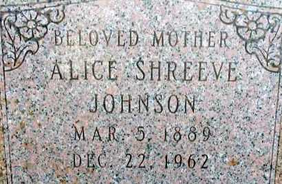 SHREEVE JOHNSON, ALICE - Apache County, Arizona | ALICE SHREEVE JOHNSON - Arizona Gravestone Photos