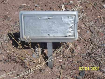 JOHNSON, FLORENCE - Apache County, Arizona | FLORENCE JOHNSON - Arizona Gravestone Photos