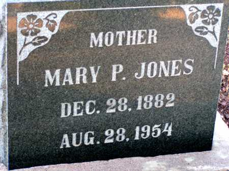 JONES, MARY P. - Apache County, Arizona | MARY P. JONES - Arizona Gravestone Photos