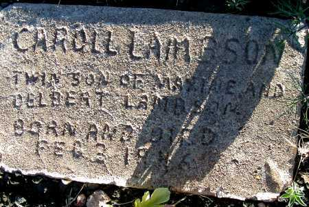 LAMBSON, CAROLL - Apache County, Arizona   CAROLL LAMBSON - Arizona Gravestone Photos