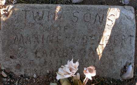 LAMBSON, TWIN SONS - Apache County, Arizona | TWIN SONS LAMBSON - Arizona Gravestone Photos