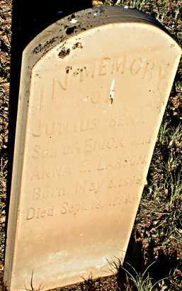 LARSON, JUNIUS BENJ. - Apache County, Arizona | JUNIUS BENJ. LARSON - Arizona Gravestone Photos