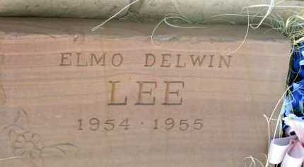 LEE, ELMO DELWIN - Apache County, Arizona | ELMO DELWIN LEE - Arizona Gravestone Photos