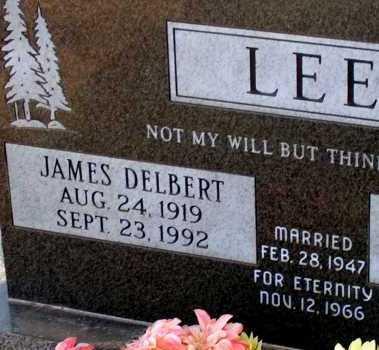 LEE, JAMES DELBERT - Apache County, Arizona | JAMES DELBERT LEE - Arizona Gravestone Photos