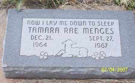 RAE MENGES, TAMARA - Apache County, Arizona | TAMARA RAE MENGES - Arizona Gravestone Photos