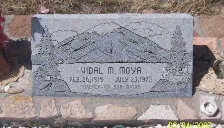 MOYA, VIDAL M - Apache County, Arizona | VIDAL M MOYA - Arizona Gravestone Photos