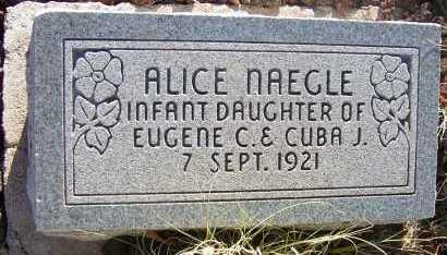 NAEGLE, ALICE - Apache County, Arizona | ALICE NAEGLE - Arizona Gravestone Photos