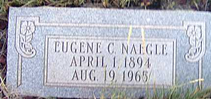 NAEGLE, EUGENE C. - Apache County, Arizona | EUGENE C. NAEGLE - Arizona Gravestone Photos