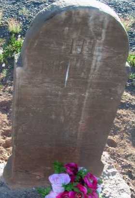 NELSON, JAMES PRICE - Apache County, Arizona | JAMES PRICE NELSON - Arizona Gravestone Photos