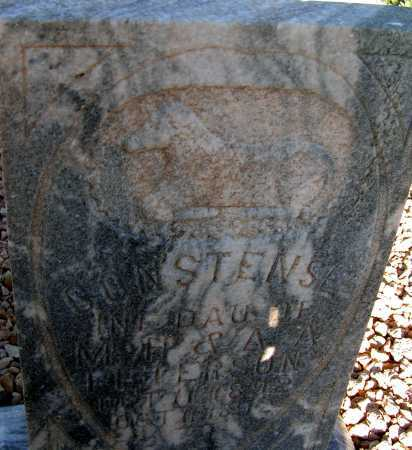 PETERSON, CONSTENSE - Apache County, Arizona | CONSTENSE PETERSON - Arizona Gravestone Photos