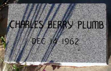 PLUMB, CHARLES BERRY - Apache County, Arizona | CHARLES BERRY PLUMB - Arizona Gravestone Photos