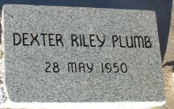 PLUMB, DEXTER RILEY - Apache County, Arizona | DEXTER RILEY PLUMB - Arizona Gravestone Photos