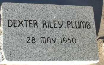 PLUMB, DEXTER RILEY - Apache County, Arizona | DEXTER RILEY PLUMB - Arizona Gravestone Photos