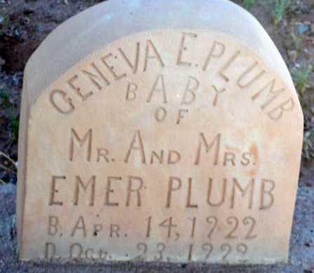 PLUMB, GENEVA E. - Apache County, Arizona | GENEVA E. PLUMB - Arizona Gravestone Photos