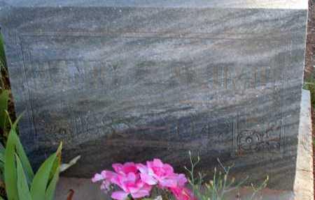 PLUMB, HENRY E. - Apache County, Arizona   HENRY E. PLUMB - Arizona Gravestone Photos