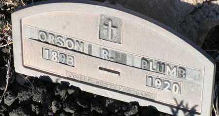 PLUMB, ORSON R. - Apache County, Arizona | ORSON R. PLUMB - Arizona Gravestone Photos