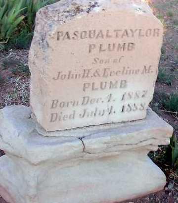 PLUMB, PASQUAL TAYLOR - Apache County, Arizona | PASQUAL TAYLOR PLUMB - Arizona Gravestone Photos