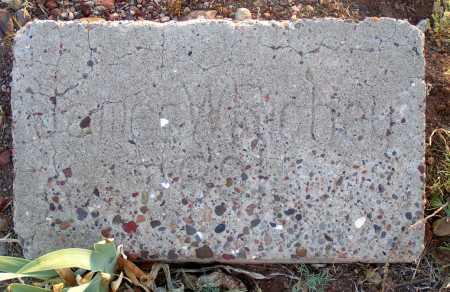 RICHEY, JAMES W. - Apache County, Arizona | JAMES W. RICHEY - Arizona Gravestone Photos