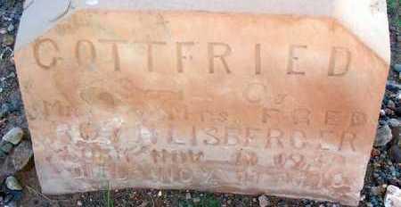 ROTHLISBERGER, GOTTFRIED - Apache County, Arizona | GOTTFRIED ROTHLISBERGER - Arizona Gravestone Photos