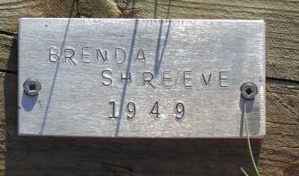 SHREEVE, BRENDA - Apache County, Arizona | BRENDA SHREEVE - Arizona Gravestone Photos