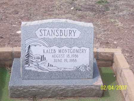 STANSBURY, KALEB MONTGOMERY - Apache County, Arizona | KALEB MONTGOMERY STANSBURY - Arizona Gravestone Photos