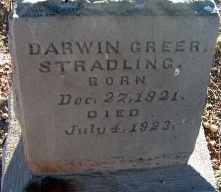 STRADLING, DARWIN GREER - Apache County, Arizona | DARWIN GREER STRADLING - Arizona Gravestone Photos
