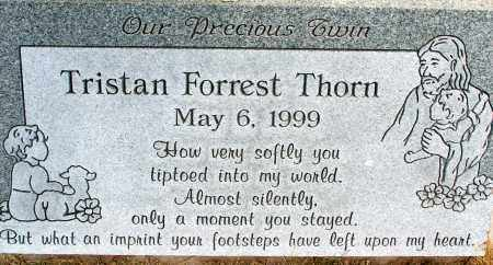 THORN, TRISTAN FORREST - Apache County, Arizona | TRISTAN FORREST THORN - Arizona Gravestone Photos