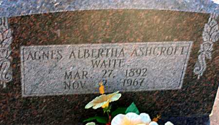 WAITE, AGNES ALBERTHA - Apache County, Arizona | AGNES ALBERTHA WAITE - Arizona Gravestone Photos