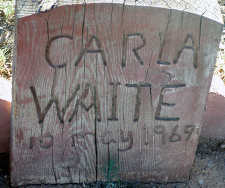 WAITE, CARLA - Apache County, Arizona | CARLA WAITE - Arizona Gravestone Photos