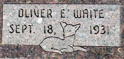 WAITE, OLIVER E. - Apache County, Arizona | OLIVER E. WAITE - Arizona Gravestone Photos
