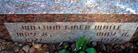 WAITE, WILLIAM EMER - Apache County, Arizona | WILLIAM EMER WAITE - Arizona Gravestone Photos
