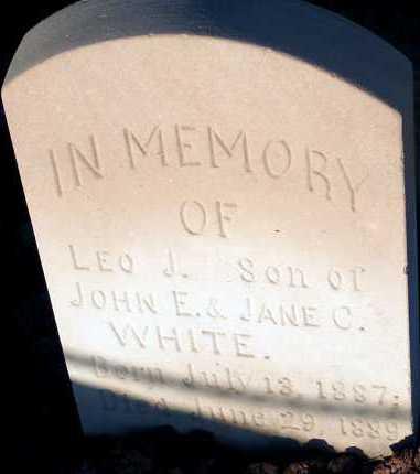 WHITE, LEO J. - Apache County, Arizona | LEO J. WHITE - Arizona Gravestone Photos