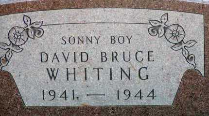 WHITING, DAVID BRUCE - Apache County, Arizona | DAVID BRUCE WHITING - Arizona Gravestone Photos