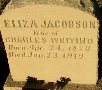 JACOBSON WHITING, ELIZA - Apache County, Arizona | ELIZA JACOBSON WHITING - Arizona Gravestone Photos