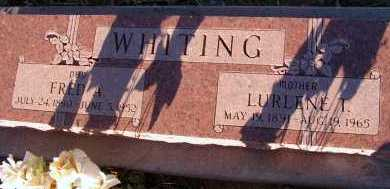 WHITING, FRED A. - Apache County, Arizona | FRED A. WHITING - Arizona Gravestone Photos