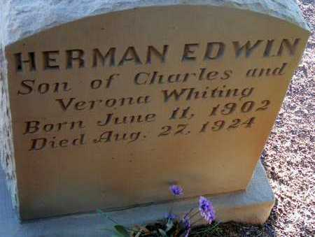 WHITING, HERMAN EDWIN - Apache County, Arizona | HERMAN EDWIN WHITING - Arizona Gravestone Photos