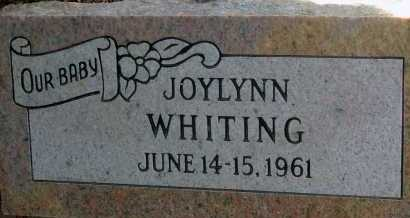 WHITING, JOYLYNN - Apache County, Arizona | JOYLYNN WHITING - Arizona Gravestone Photos