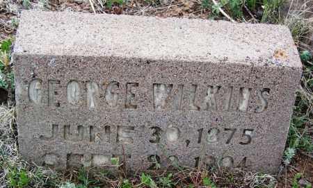 WILKINS, GEORGE - Apache County, Arizona | GEORGE WILKINS - Arizona Gravestone Photos